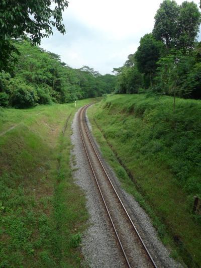 ktm_railway_tracks_bukit_timah_singapore_-_20101128